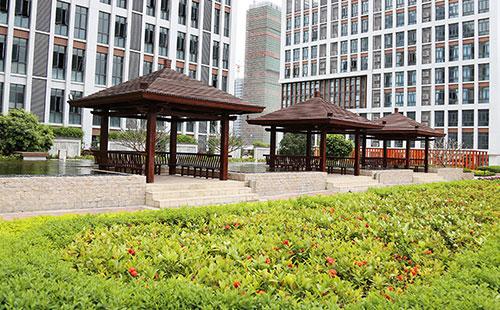 广州高端老人院_悠闲庭院